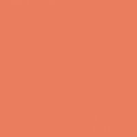 Orange Daylily - DE5145