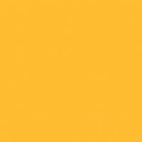 Vibrant Honey - DE5314