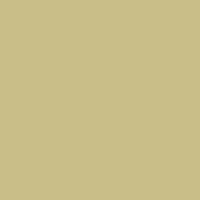 Olive Hint - DE5500