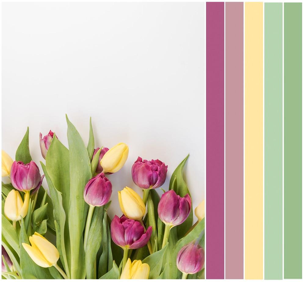 tulips_palette.jpg