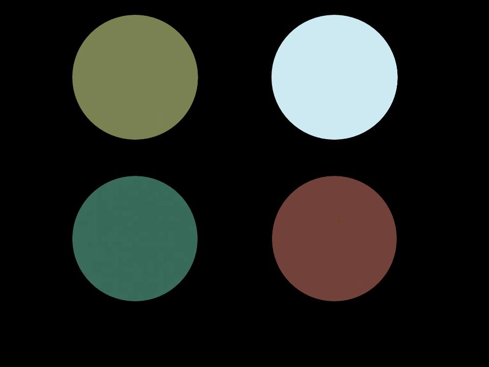 Art_Color_Palettes_-_Detroit_Institute_of_Art.png