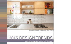 Regular 2015 trends in action kitchen title page