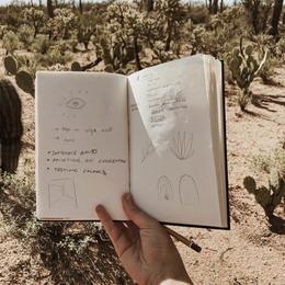 Small jth tucson cacti 720x900